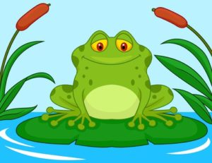 על צפרדעים והחלטות לשנה החדשה